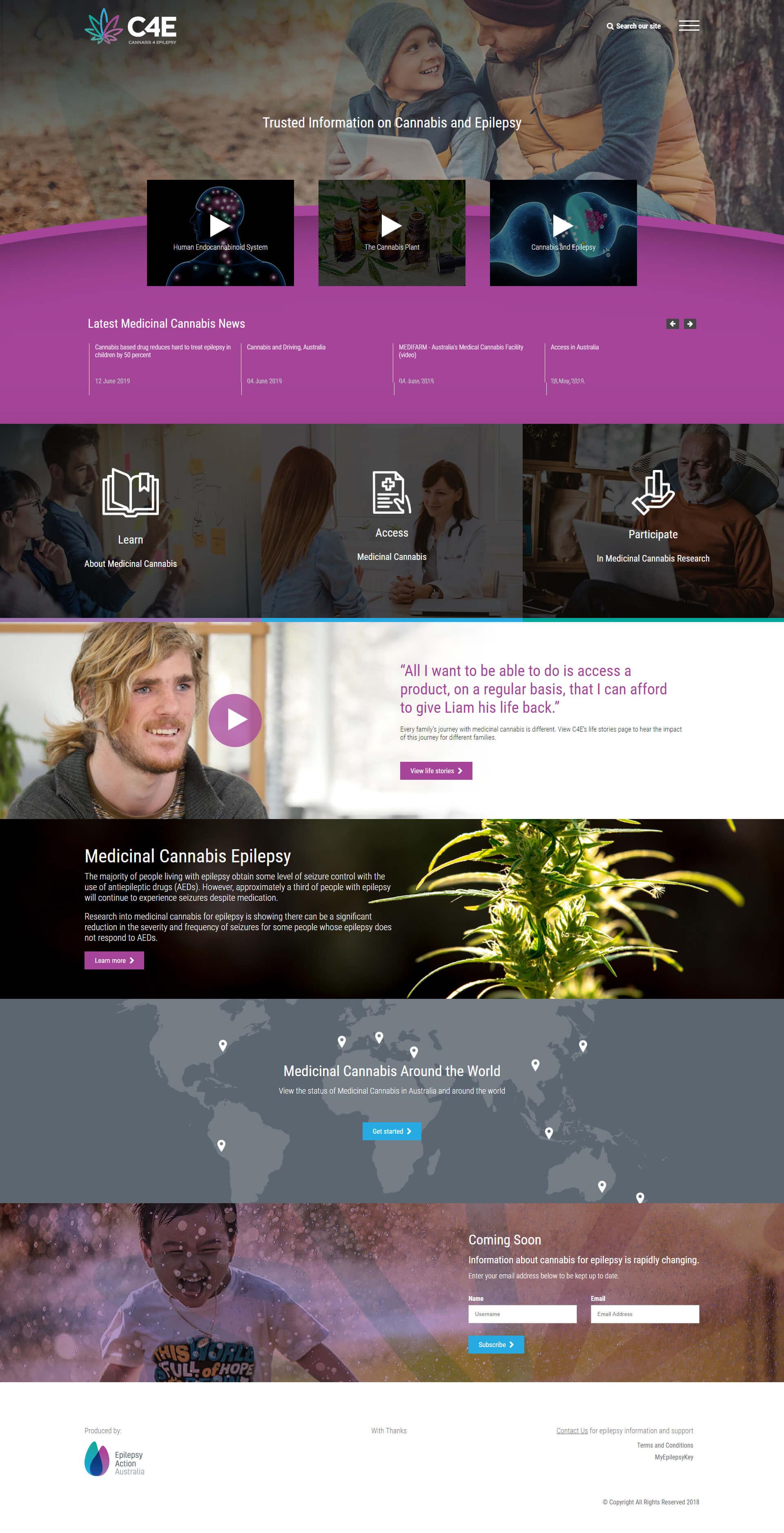 website_development5